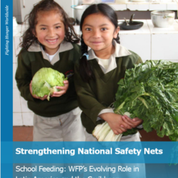Strengthening National Safety Nets cover